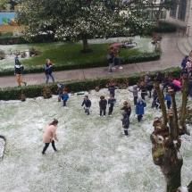SNOW (11)